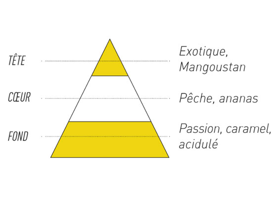 e-liquide sense passion mangoustan pyramide olfactive